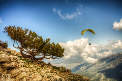 Babada, Fethiye (Nejdet Duzen) Tags: trip travel cloud mountain tree sport turkey view trkiye paragliding spor fethiye bulut da manzara aa turkei ldeniz seyahat mula kubak yamaparat babada bestevergoldenartists besteverexcellencegallery