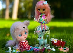 Blythe picnic on a sunny day