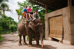 riding an elephant (Sam Scholes) Tags: travel vacation bali elephant me animal digital indonesia zoo nikon sam adventure kimberly asianelephant elephasmaximus d300 sukawati raspberrytart balizoo singapadu kebunbinatangbali jalanrayasingapadu