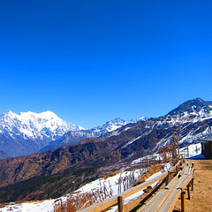 Laurebina Yak, 3,900 meters asl, Gosainkunda trek, Langtang national park, Nepal