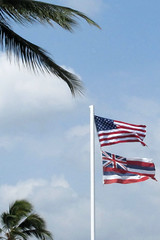 Honokohou flags (BarryFackler) Tags: trees sky clouds marina palms island hawaii harbor flag palmtrees bigisland flagpole kona starsandstripes starspangledbanner oldglory kailuakona unitedstatesflag konacoast hawaiicounty hawaiianflag hawaiiisland 2013 westhawaii northkona barryfackler barronfackler honokohouharbor honokohoumarinaandsmallboatharbor honokohoumarina