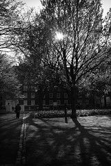 On the way home (ebenette) Tags: leica blackandwhite london photography m8 summilux35mmasph whydidihaveitatf14