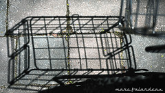 JUST SHADOWS (marc falardeau) Tags: toronto canada spring nikon shadows basket may amateur gayphotographer d300s