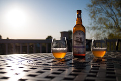 Ommegang, what a beautiful day! (Fuel Injected Photography) Tags: beer brew hennepin saison ommegang farmhousesaison