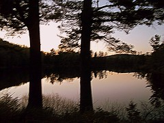 Evening At Long Pond. (dccradio) Tags: trees ny newyork reflection tree nature natural scenic adirondacks upstateny duane longpond northernny lakeduane