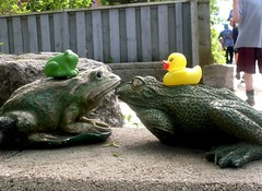 Playing Leapfrog (Georgie_grrl) Tags: friends toronto ontario garden couple decoration photographers social frog duckie outing mydarkpinkside samsungd760 torontophotowalks dirkduckly lilypadleaper topwdg gerrarddanforthwalk topwdanger