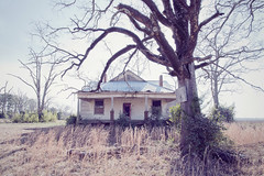 (amy higgins) Tags: tree abandoned home georgia dead farm thesouth dying somewhereingeorgia