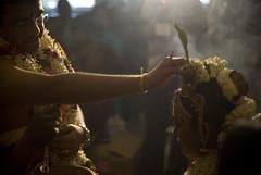 Seshadri Gopalakrishnan & Vandana Krishnakumar, wedding bells, T. Nagar, Chennai (Ravages) Tags: family wedding portrait people india person faces brother madras ceremony documentary marriage celebration event document ritual tradition chennai ravages t