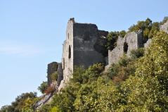 Château_d_Allègre_02.JPG_-_©_Philippe_Nicolas