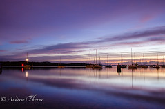DSC_5173.jpg (Thorne Photography) Tags: sunset lake lightpainting water docks reflections pier orb dorset poole pooleharbour
