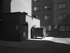 Brick Yard Revisited (geowelch) Tags: downtowneast toronto urbanfragments urbanlandscape courtyard brickwork shadows apartments blackwhite film 120 mediumformat txp320 trix fujigs645s plustekopticfilm7400 645 6x45 hc110