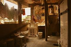 (eflon) Tags: rio de janeiro brazil bz favela kitchen clothes drying warm tones