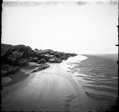 (plansac) Tags: noiretblanc blackwhitephotos filmphotography argentique photographieargentique stnop pinholephoyography sea ocean lowtide marebasse lacanau 15aout