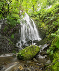 Dolgoch Falls (Adam Court) Tags: waterfall long exposure 10 stop nd 1000 hoya sony a6000 samyang 12mm moss rocks green