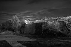 Night Call (salahudin's paragnomen) Tags: night light krakw krakoff moon dark scary creepy bw salahudin shine strange weird