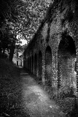 The path along the rampart (Explored) (Mathay Jean-Luc) Tags: canon eos 1100d rebelt3 sigma 1750mm bw bnw blackandwhite noiretblanc monochrome city ville street rue remparts ramparts path chemin trees arbres grass herbe light lumire old vieux atmosphere ambiance france flandre flanders europe europa bergues nordpasdecalais door porte sombre dark outdoor outside decay digital perspective quiet contrast town topf50