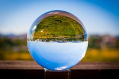_MG_0261 (AdamFejes) Tags: glass globe glassglobe pointofview light sun summer blackandwhite bw colour city budapest danube sunset