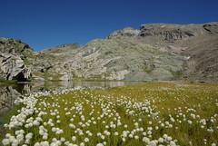 Lac Infrieur de Blanchet (tihi29) Tags: lac blanchet infrieur
