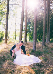 S & H (eva_wurzer) Tags: afterwedding braut brutigam retro vintage liebe hochzeit natur outdoor nikon landschaft kleid anzug sonne