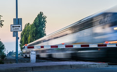 look (pbo31) Tags: oakland california eastbay alamedacounty nikon d810 color august 2016 summer boury pbo31 sanleandro lightstream motion motionblur amtrak capitolcorridor crossing look sunset roadway passing train