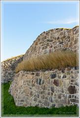 _OVE5615 (Ove Cervin) Tags: 2016 flickr fortress fstning halden nikon norge norway public