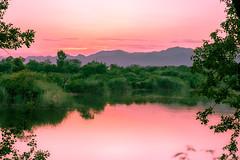 The Lake! (aliffc3) Tags: rawallake reflections evening sunset nikond750 tamron2470f28 landscape waterfront holiday travel islamabad pakistan