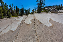 Natural Design at Olmsted Point in Yosemite National Park (Lee Rentz) Tags: fredericklawolmsted jr america california curves design eroded erosion geologic geological geology glacial glacier glaciers granite layers lines mountainous mountains nationalparkservice northamerica olmstedpoint polish polished rock rocks sierra sierranevada smoothed stone surface usa yosemite yosemitenationalpark