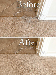 18 Carpet patch do to cat pet damage Austin Round Rock Cedar Park Manor Bee Cave San Marcos (Carpet Repair) Tags: austincarpetrepair cedarparkcarpetrepair roundrockcarpetrepair pflugervillecarpetrepair sanmarcoscarpetrepair westlakehillscarpetrepair wimberleycarpetrepair suncitycarpetrepair driftwoodcarpetrepair georgetowncarpetrepair drippingspringscarpetrepair kylecarpetrepair laketraviscarpetrepair lakewaycarpetrepair leandercarpetrepair manorcarpetrepair onioncreekcarpetrepair bartoncreekcarpetrepair budacarpetrepair carpetrepair repaircarpeting carpetrepaircost carpetrepairservice carpetrepaircompanies professionalcarpetrepair carpetdamagerepair carpetrepairspecialist repairingcarpetdamage cancarpetberepaired canyourepaircarpet carpetrepairaustintx fixingcarpet carpetfixing fixcarpet carpetpatching patchingcarpet carpetpatch patchcarpet carpetpatches patchacarpet carpetpatchingcost carpetpatchingservice carpetrepairpatch repaircarpets carpetpatchrepair canyoupatchcarpet repairingcarpetpatch carpet patching patch patchwork repair austin kyle lakeway buda cedarpark roundrock sanmarcos beecave snag tear torn fraying frayed unraveling hole dog cat petdamage carpetpetdamage carpetrepairpetdamageaustin carpetrepairpetdamage petdamagecarpetrepair