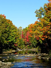 Millstream River Reflections (clickclique) Tags: river trees color colour water reflections red orange yellow blue nature fall rocks outdoors outdoor foliage naturescarousel