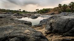 Oasis (mlahsah) Tags: nikond750 nikon sa ksa sabya jazan oasis       stones water