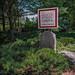 Asticou Azalea Garden in Northeast Harbor, Maine
