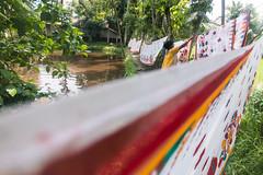 lines (Kolkata Jukebox) Tags: caning saree kolkata kolkatajukebox jukebox street streetphotography streets kolkatastreet canon travel