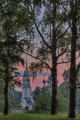 (dgaripov) Tags:           201607 russia vologda presentationchurch morning dawn summer birch tree nobody