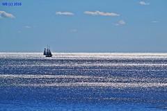 DSC_0350n wb (bwagnerfoto) Tags: usa ocean landscape landschaft tájkép ship hajó sky blue glitter sunny serene endless calm outdoor nature seascape