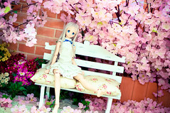 DSC01773 () Tags: dolls custom volks menma dollfiedream anohana meikohonma