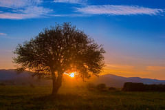Sunrise (Vagelis Pikoulas) Tags: blue trees light sky sun mountain mountains west colour reflection tree green clouds sunrise canon landscape eos spring kiss europe niceshot view greece western 1855mm x4 attiki vilia 2013 550d oinoi colorphotoaward mygearandme ringexcellence musictomyeyeslevel1