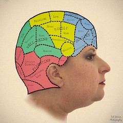 04-13-13 Self- Portrait as Phrenology (lildebweb) Tags: selfportrait head profile diagram squareformat cranium phrenology odc project365 cy365