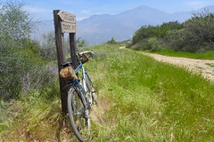 (cyclotourist) Tags: california bike bicycle hills trail mentone rivendell crafton allrounder mapmyride:route=296421965