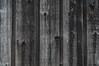 barnboard fence (postbear) Tags: wood toronto barn fence boards board nail barns fences nails weathered plank planks cabbagetown nailed barnboard barnboardfence robfordasshole destroycraigslist cabbageville cabbageopolis robfordisanasshole robfordandstephenharperaredisgustingbigots robfordisalyingsackofshit allconservativesarefilth likeallbulliesrobfordisachickenshitcoward robfordisafraidofeverything robfordisastupidbitch marywalshformayororprimeminister atownmadeentirelyfromcabbages thenewmapfunctionisterrible robfordhasneonazisforfriends foundoutreadingisdifficult robfordisadisgustingfuckingthief thenewuploaderisalsoterrible helpourformermayorisastupidclown formermayorrobfordlikescottaging call911theformermayorsbeatinghiswifeagain richwhiteconservativesbuyjusticeyetagain robfordsexuallyassaultswomen