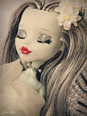 Frankie Custom - Dream (Game of Fate) Tags: pictures flowers monster photography google high doll flickr pretty photos pics frankie collection custom mattel myth collector frankiestein monsterhigh gameoffate gameoffatephotography