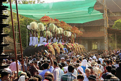 MG_3586 (PRATHAPSTOCKIMAGE) Tags: india elephant festival canon religion decoration kerala trissur pooram nettipattom eos60d