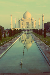 Taj Mahal Morning (Claudia_cole101) Tags: morning blue summer sky sun india reflection building nature water tajmahal huge sevenwonders
