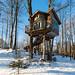 The Tiny Fern Forest Treehouse - Lincoln, VT - 2013, Feb - 06.jpg by sebastien.barre