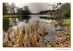 At one end of Painshill (Fred255 Photography) Tags: uk england water landscape landscapes fred l usm ef gp manfrotto waterscapes eos1ds markiii painshillpark llens greatphotographers ef1740mmf4lusm ef1740mm 1dsmk3 canoneos1dsmarkiii dragondaggerphoto dragondaggeraward mygearandme mygearandmegold mygearandmeplatinum fred255 greaterphotographers photographyforrecreation flickrsfinestimages1 vigilantphotographersunite vpu2