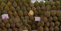 Durian (Ragg Burns Imaging) Tags: food fruit durian smelly cibo stink