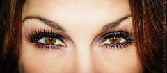 Glamour Eyes (Images by April) Tags: canon eyes eyelashes browneyes maccosmetics 550d tamron1755mmf28 t2i glamoureyes