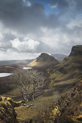 Quiraing - Isle of Skye (Phil Hunter (VividVista)) Tags: light tree scotland nikon mood isleofskye innerhebrides atmosphere d800 quiraing vividvista