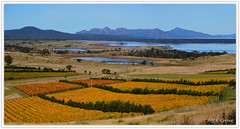 EAST COAST AUTUMN (Jeff Crowe) Tags: tasmania tasmanian bestofaustralia