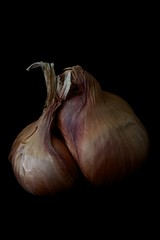 Consider The Shallot - 2 (number IX) Tags: vegetables shallots shallot 105mmf28gvrmicro vegetablephotography vegetableportrait d800e