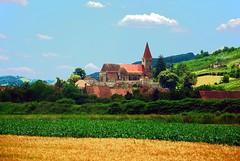 Transylvania 2011 (MarculescuEugenIancuD5200Alaska) Tags: day transylvania fleursetpaysages outstandingromanianphotographers pwpartlycloudy